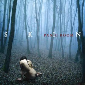 skin-2012